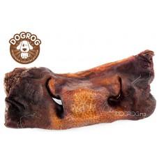 Натуральное лакомство для собак. Нос говяжий сушёный, в упаковке - 1 шт. (100 гр.)